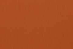423-orange